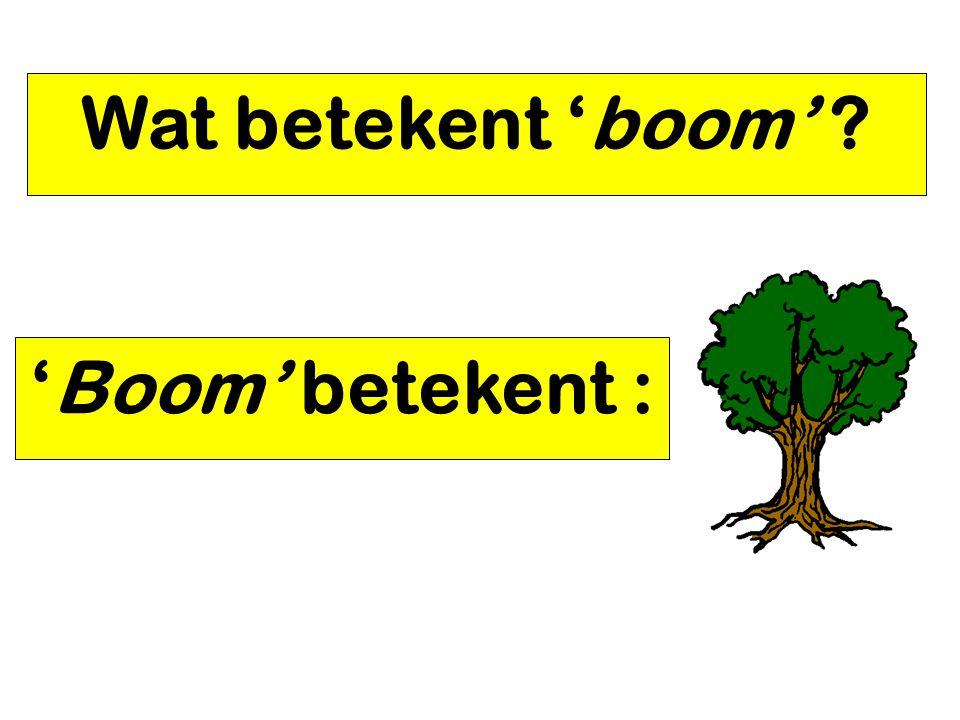 Wat betekent 'boom' 'Boom' betekent :