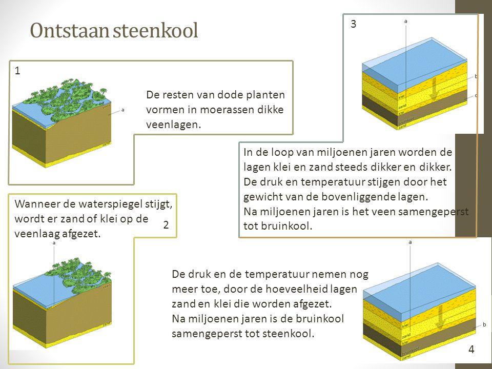 Ontstaan steenkool 3. 1. De resten van dode planten vormen in moerassen dikke veenlagen.
