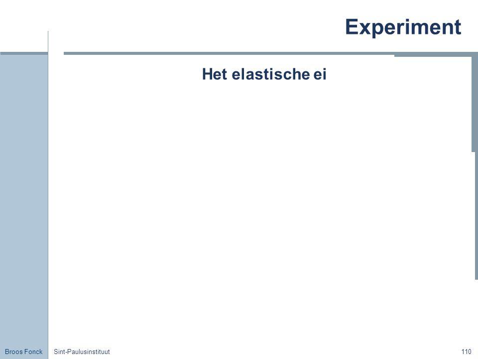 Experiment Het elastische ei Title Sint-Paulusinstituut
