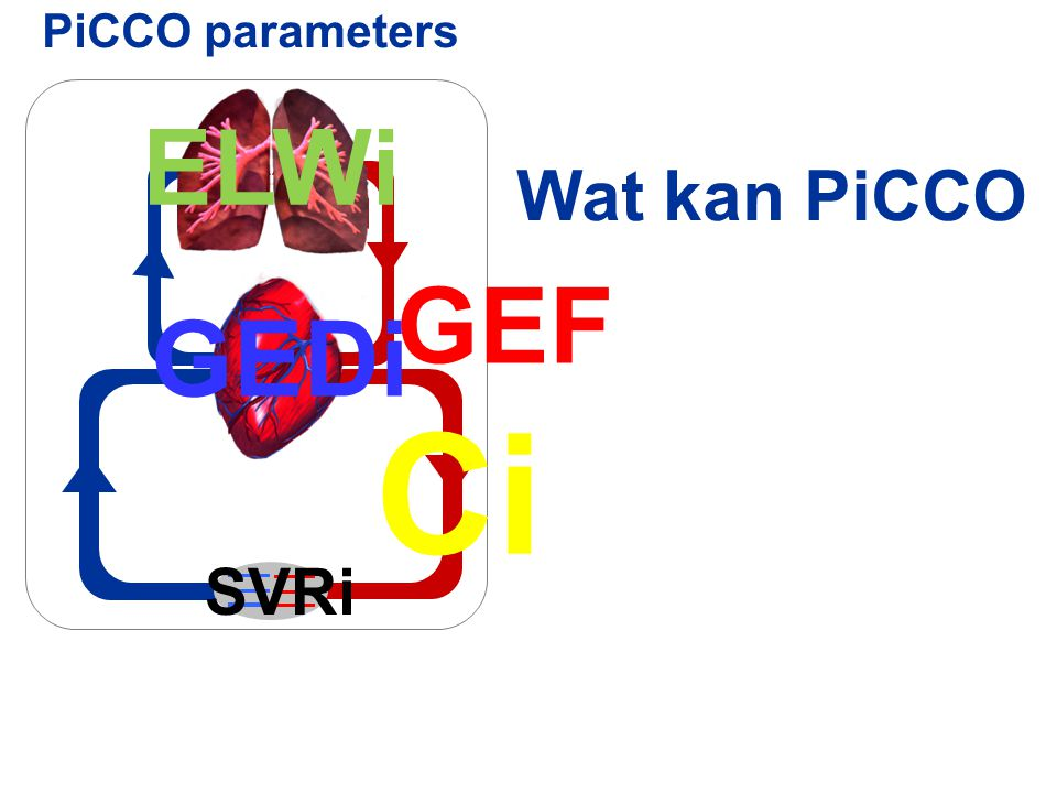 Ci ELWi GEF GEDi Wat kan PiCCO SVRi PiCCO parameters
