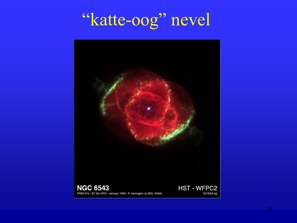 katte-oog nevel