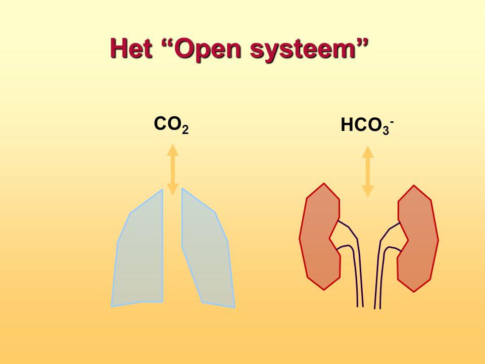 Het Open systeem CO2 HCO3-