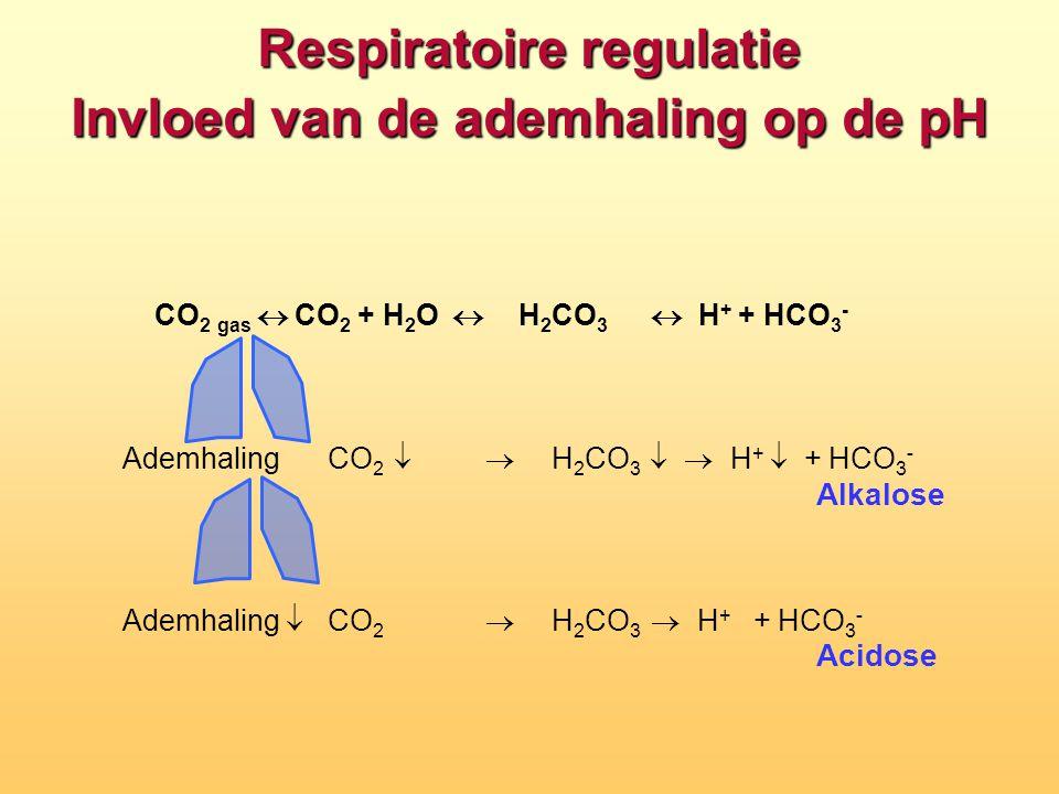 Respiratoire regulatie Invloed van de ademhaling op de pH