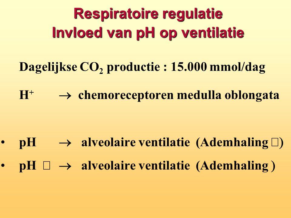 Respiratoire regulatie Invloed van pH op ventilatie