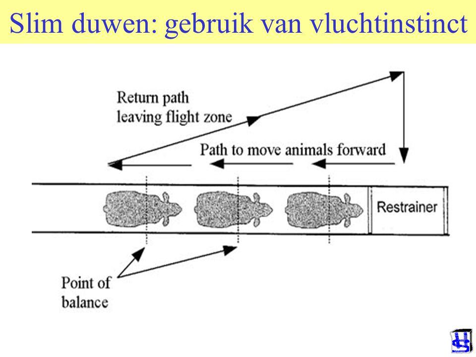 Slim duwen: gebruik van vluchtinstinct