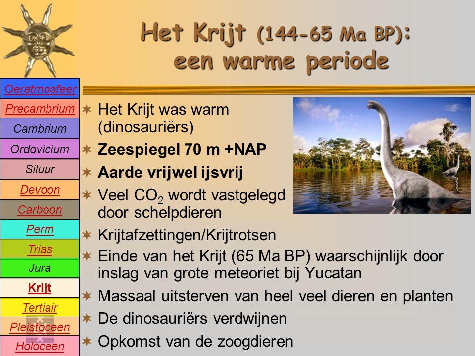 Het Krijt (144-65 Ma BP): een warme periode