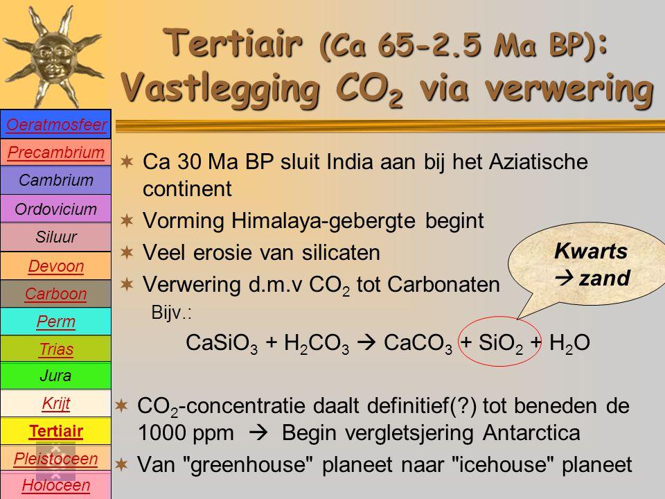 Tertiair (Ca 65-2.5 Ma BP): Vastlegging CO2 via verwering