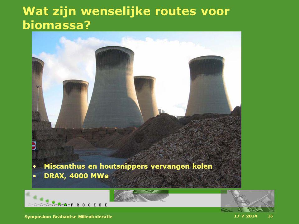 Wat zijn wenselijke routes voor biomassa