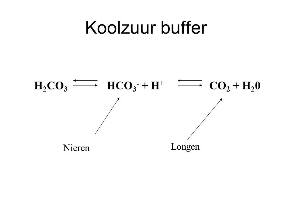 Koolzuur buffer H2CO3 HCO3- + H+ CO2 + H20 Nieren Longen