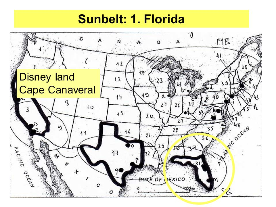 Sunbelt: 1. Florida Disney land Cape Canaveral