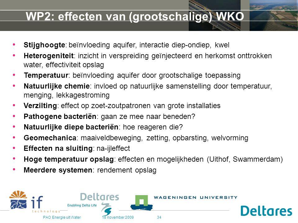 WP2: effecten van (grootschalige) WKO