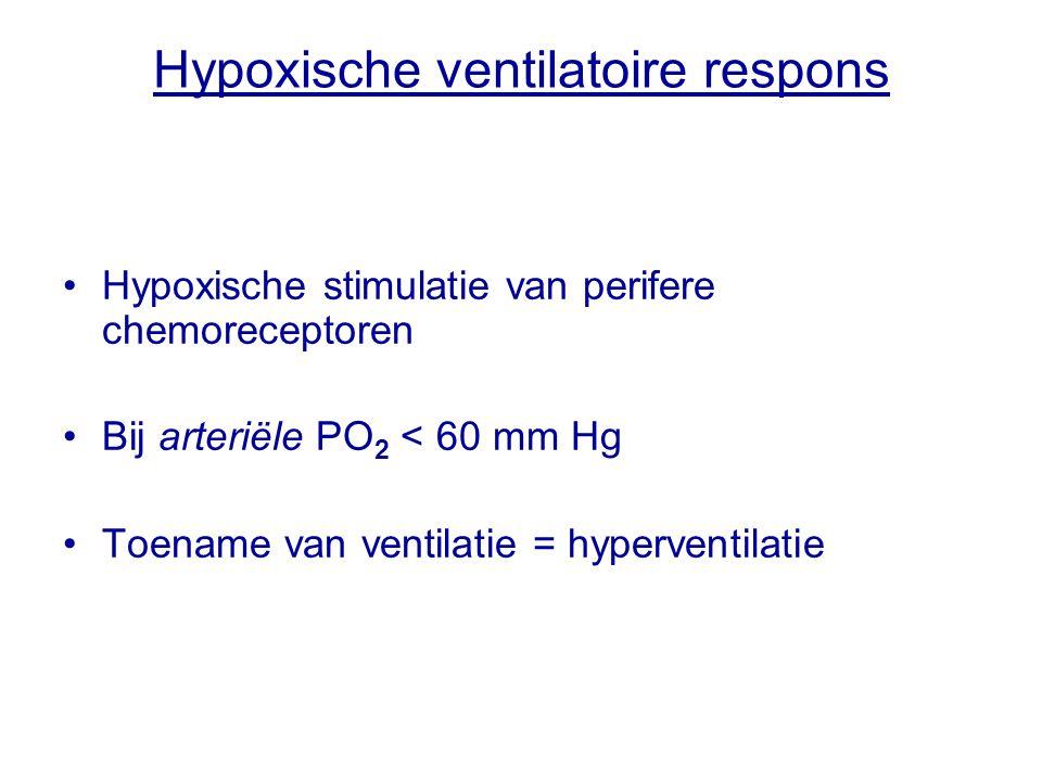 Hypoxische ventilatoire respons