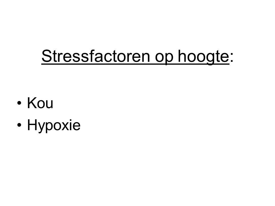 Stressfactoren op hoogte: