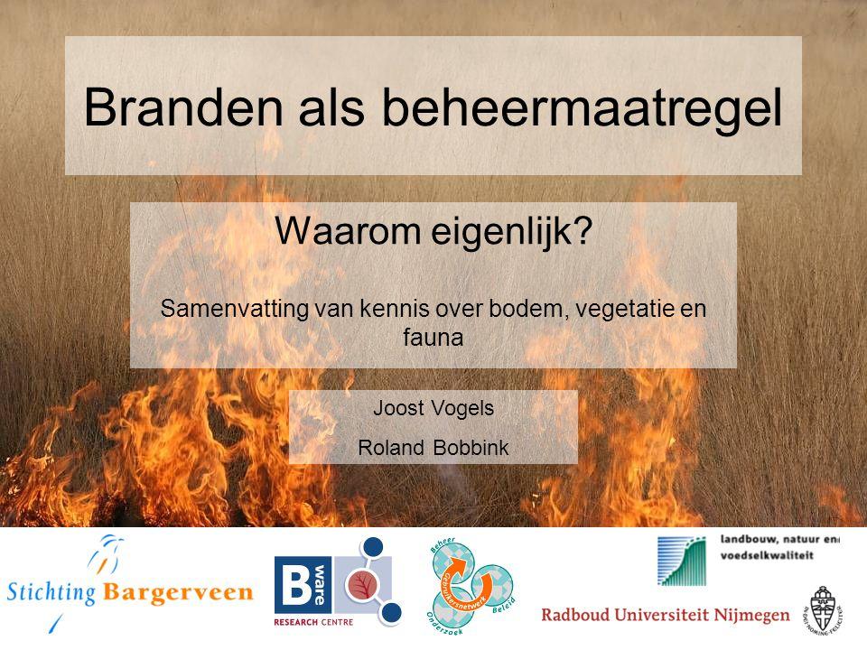 Branden als beheermaatregel