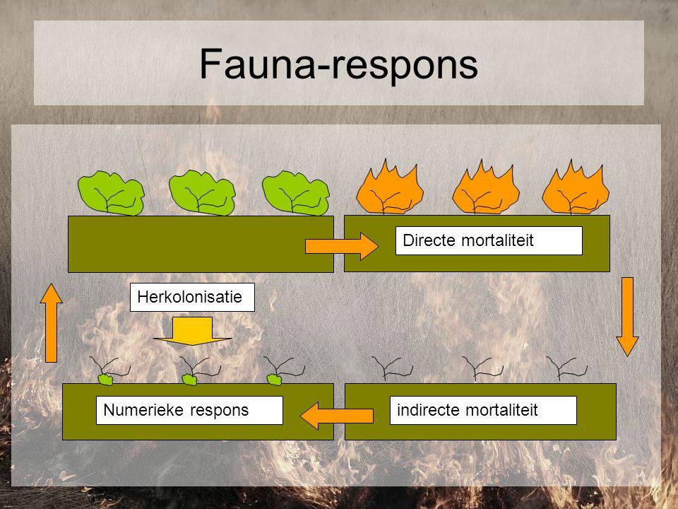 Fauna-respons Directe mortaliteit indirecte mortaliteit