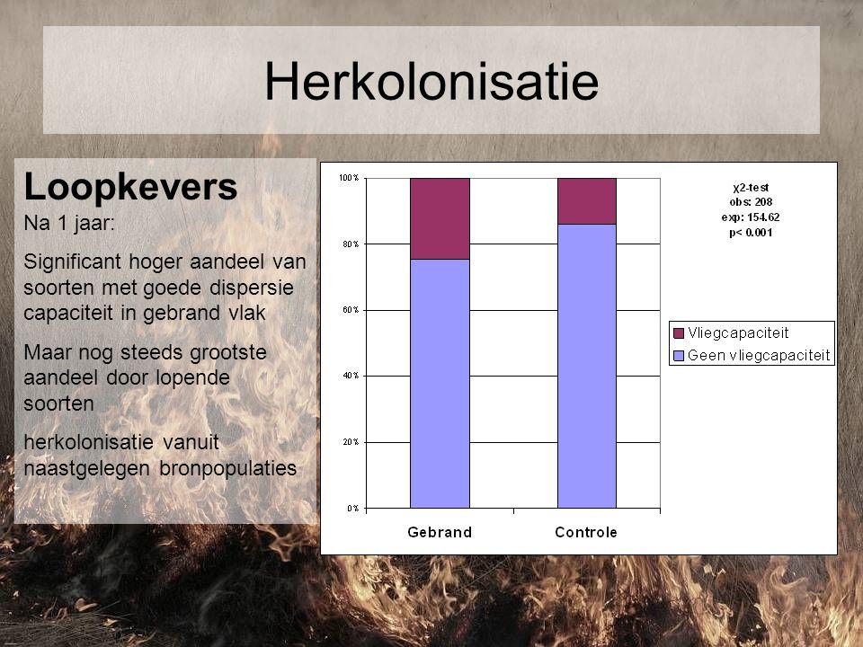 Herkolonisatie Loopkevers Na 1 jaar:
