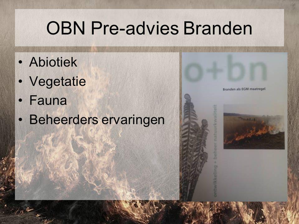 OBN Pre-advies Branden