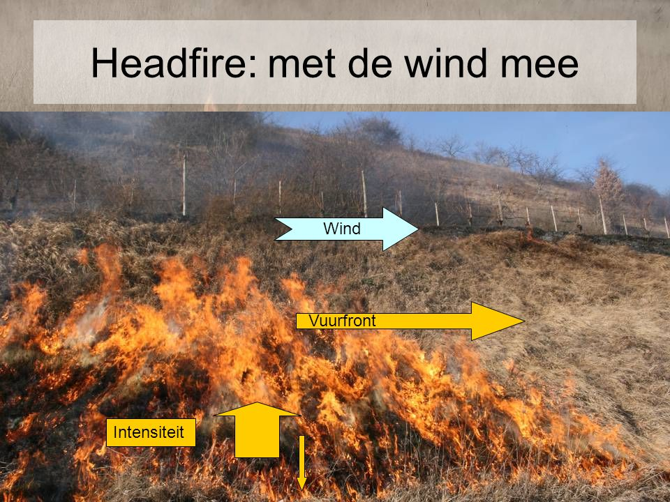 Headfire: met de wind mee
