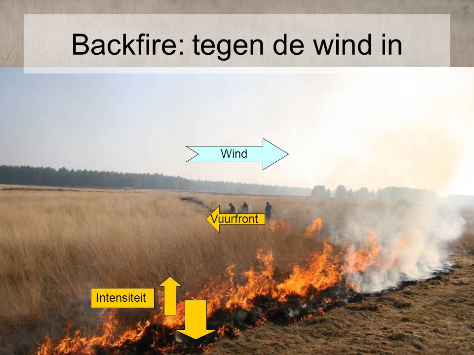 Backfire: tegen de wind in