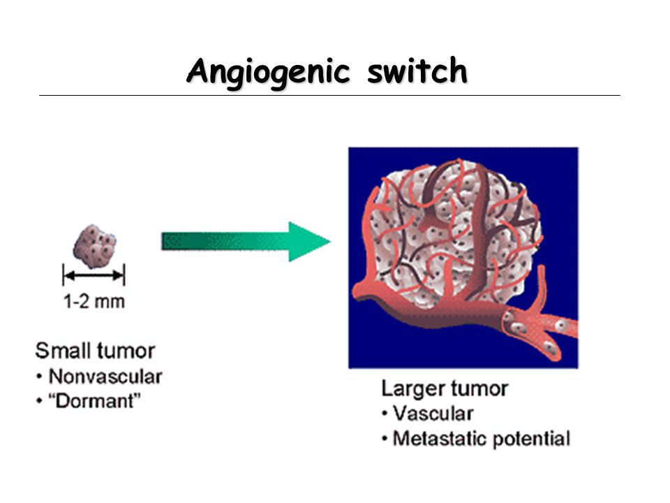 Angiogenic switch
