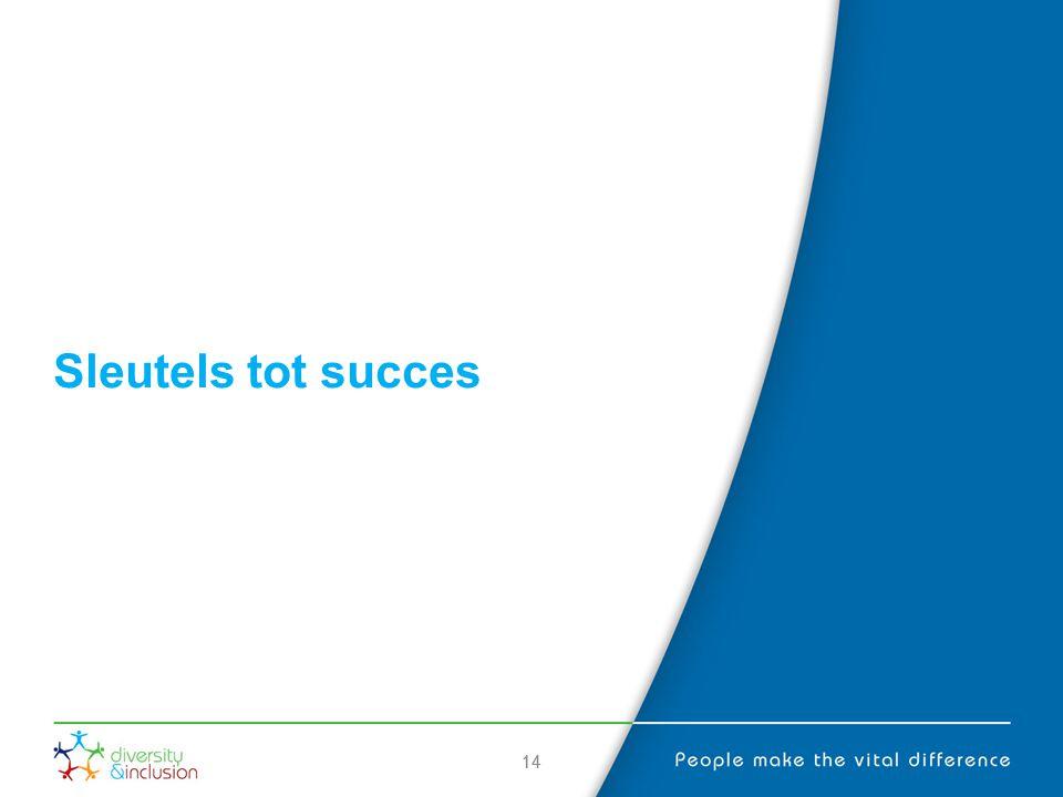 Sleutels tot succes 14