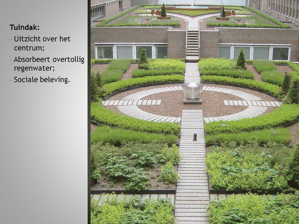 Tuindak: Uitzicht over het centrum; Absorbeert overtollig regenwater; Sociale beleving.