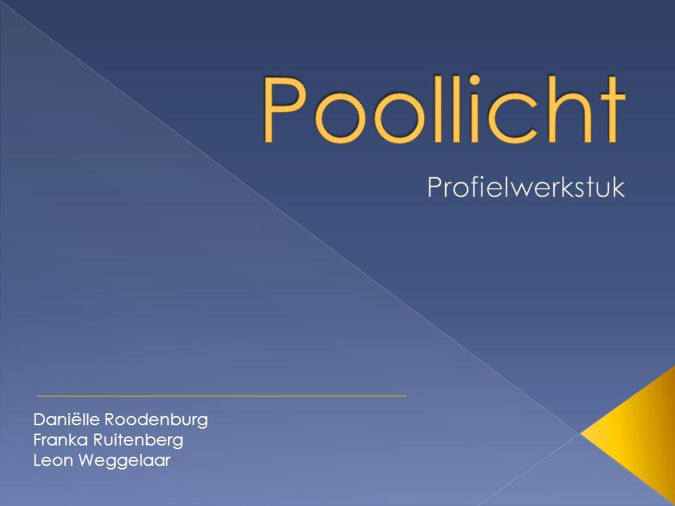 Poollicht Profielwerkstuk Daniëlle Roodenburg Franka Ruitenberg