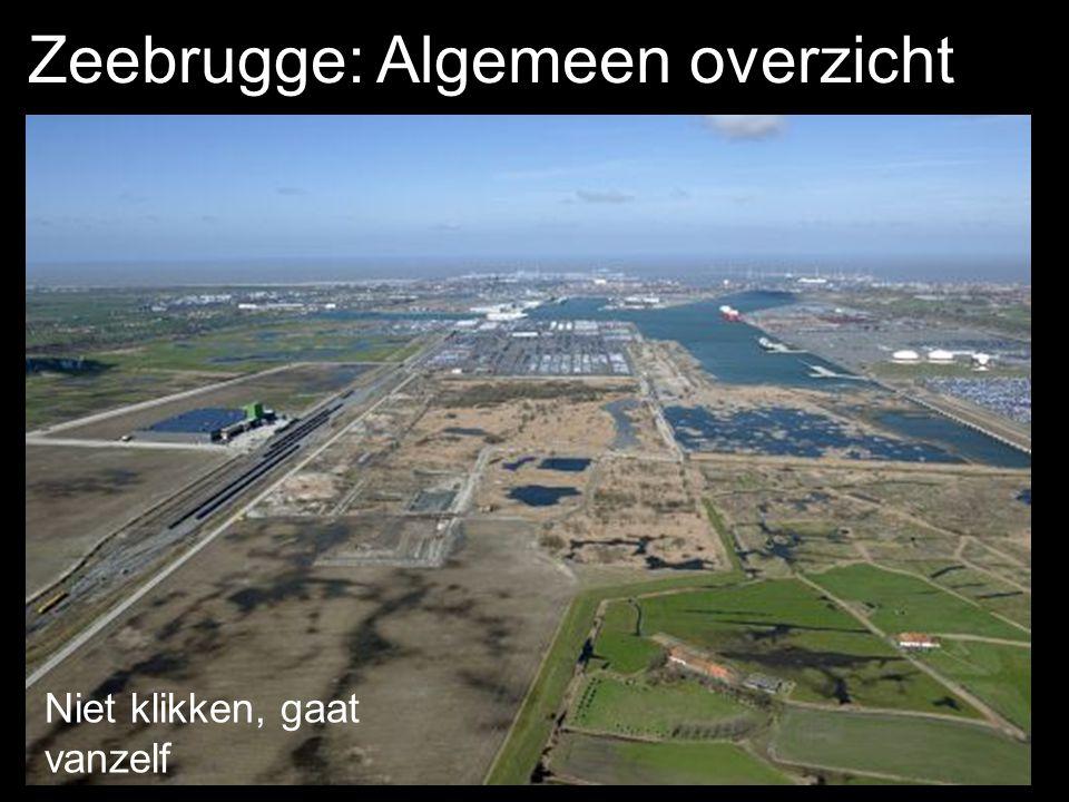 Zeebrugge: Algemeen overzicht