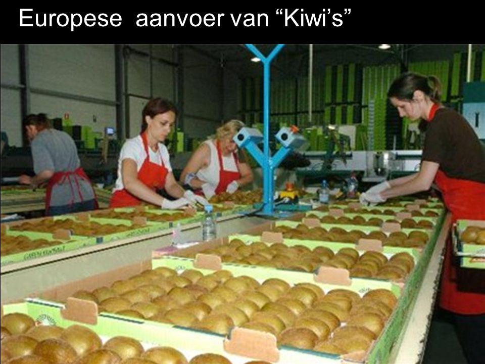 Europese aanvoer van Kiwi's