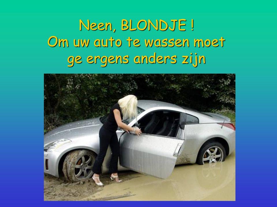 Neen, BLONDJE ! Om uw auto te wassen moet ge ergens anders zijn