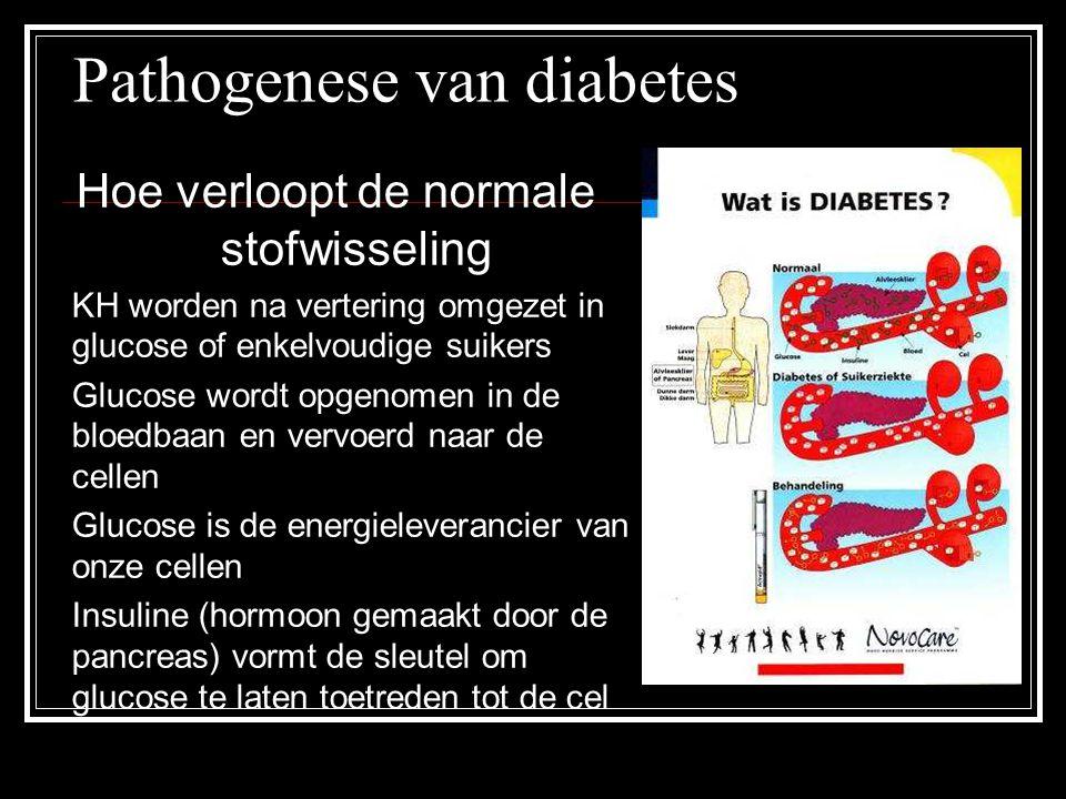 Pathogenese van diabetes