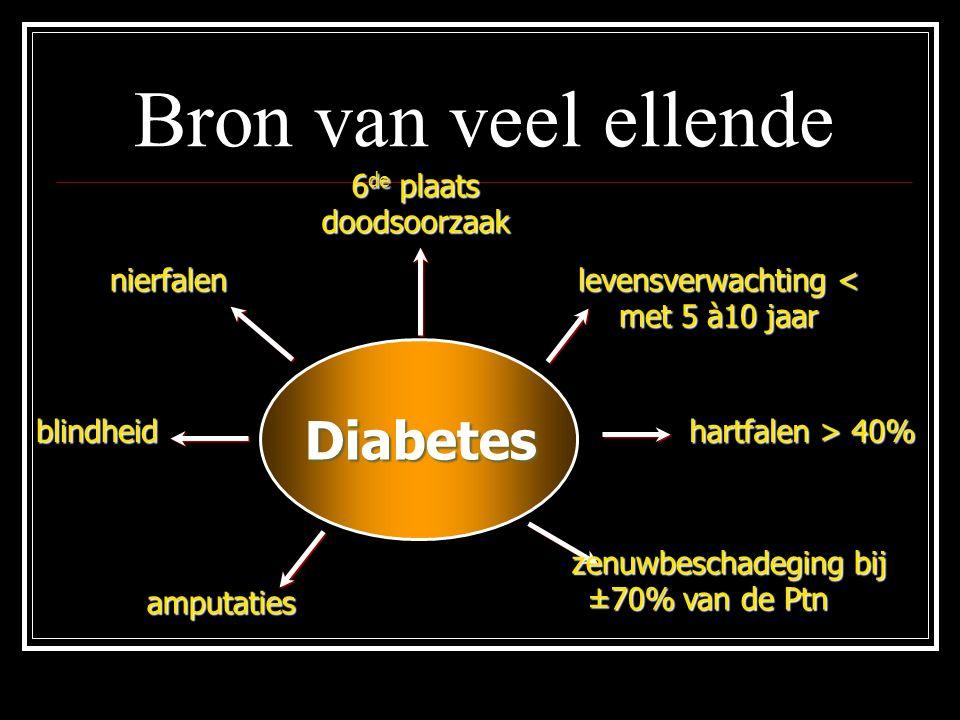 Bron van veel ellende Diabetes 6de plaats doodsoorzaak nierfalen