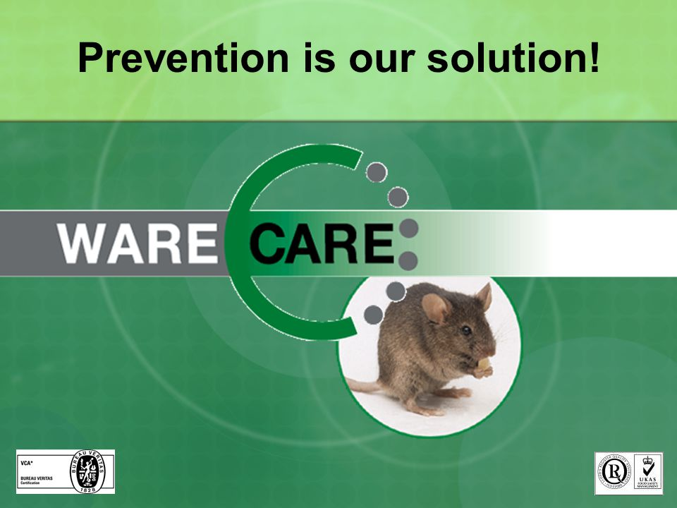 Prevention is our solution!