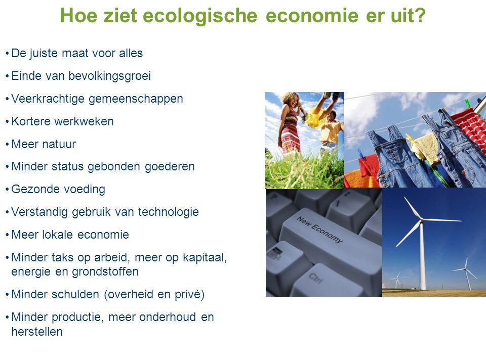 Hoe ziet ecologische economie er uit