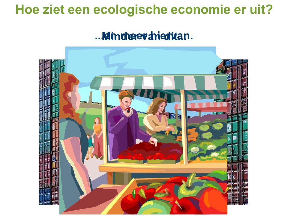 Hoe ziet een ecologische economie er uit