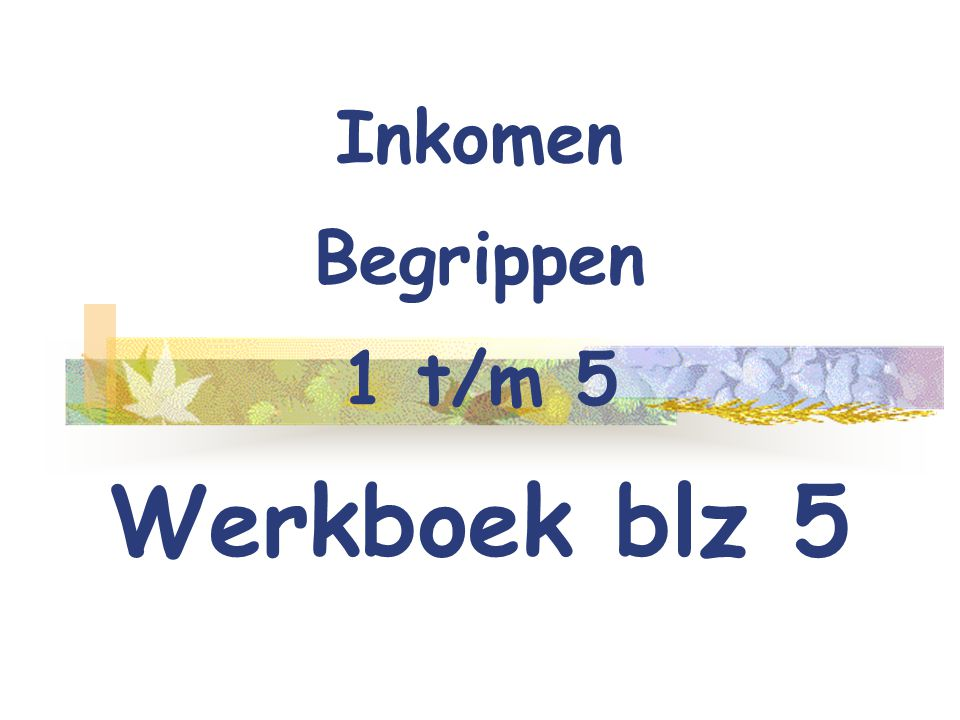 Inkomen Begrippen 1 t/m 5 Werkboek blz 5