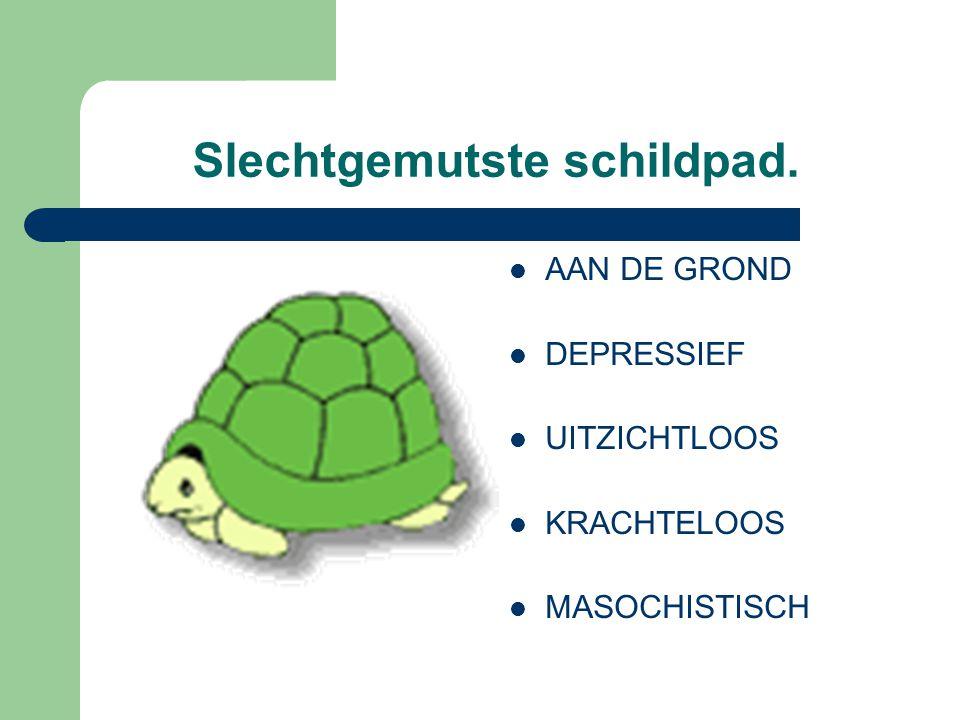 Slechtgemutste schildpad.