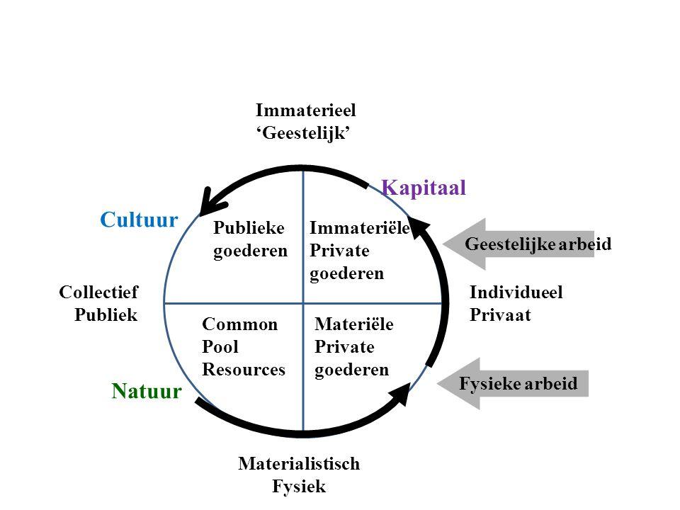 Kapitaal Cultuur Natuur Immaterieel 'Geestelijk' Publieke goederen