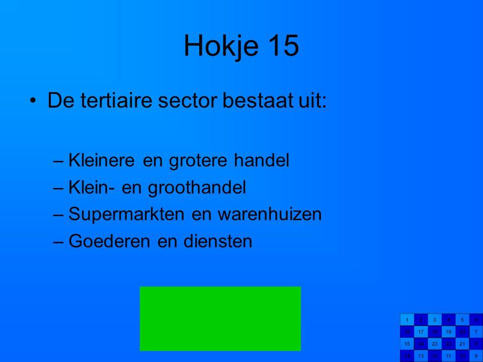 Hokje 15 De tertiaire sector bestaat uit: Kleinere en grotere handel