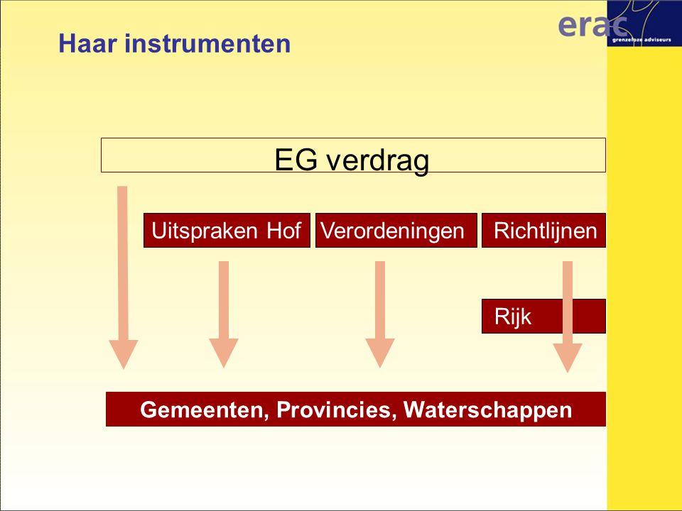 EG verdrag Haar instrumenten Uitspraken Hof Verordeningen Richtlijnen