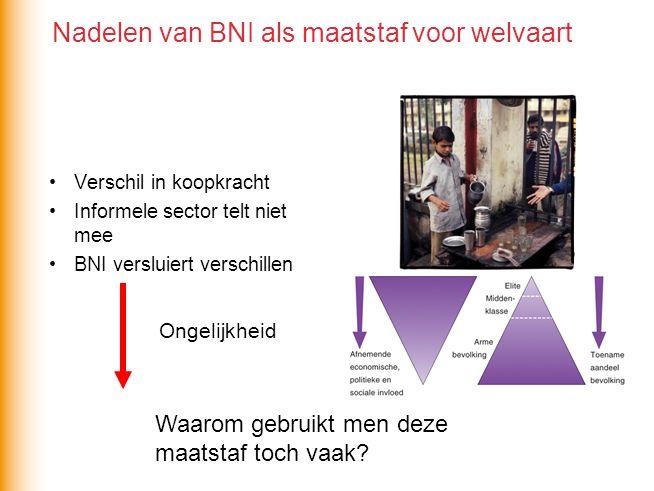 Nadelen van BNI als maatstaf voor welvaart