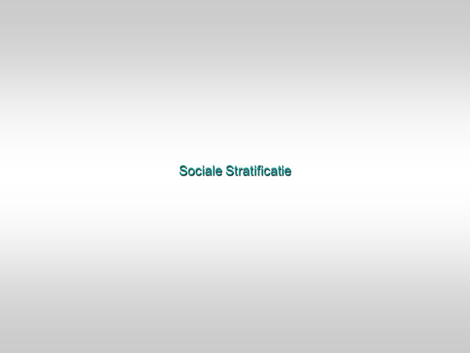 Sociale Stratificatie