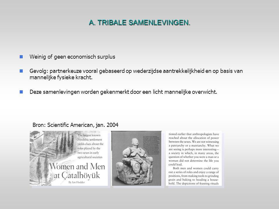 A. TRIBALE SAMENLEVINGEN.