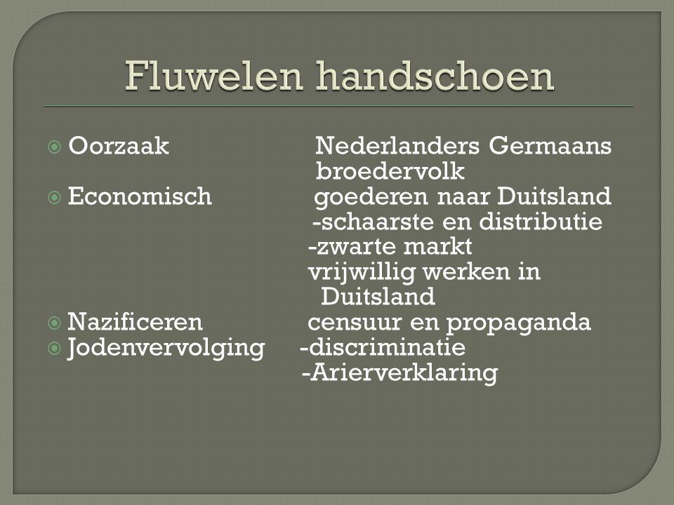 Fluwelen handschoen Oorzaak Nederlanders Germaans broedervolk