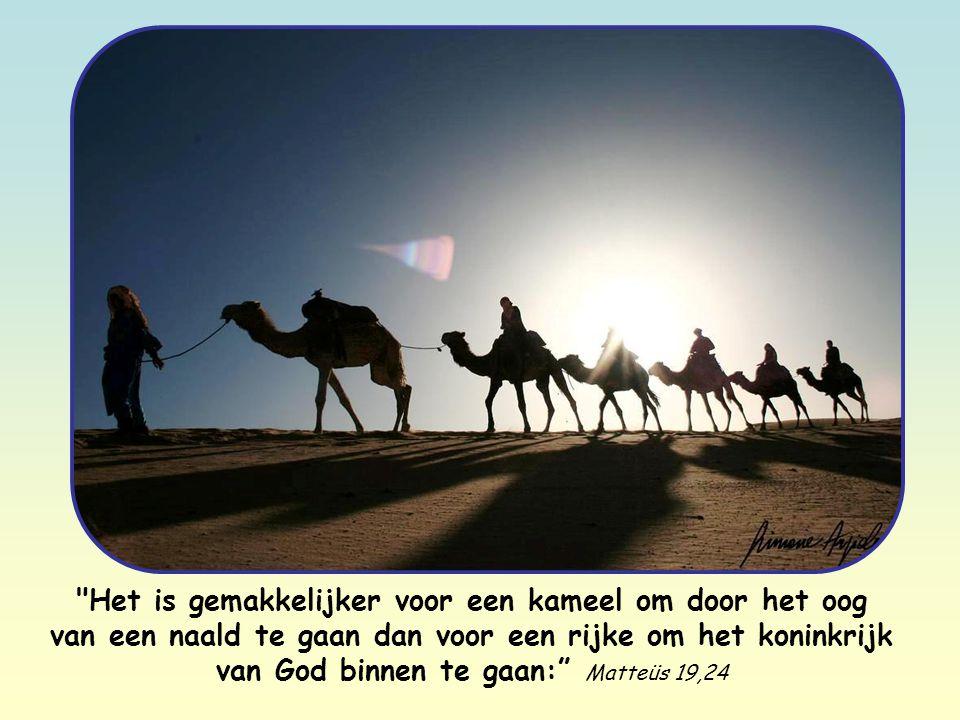 Het is gemakkelijker voor een kameel om door het oog van een naald te gaan dan voor een rijke om het koninkrijk van God binnen te gaan: Matteüs 19,24