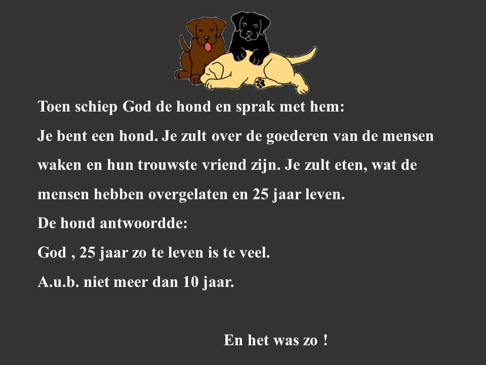Toen schiep God de hond en sprak met hem: