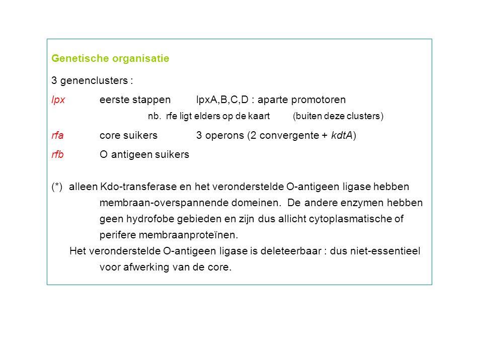 Genetische organisatie