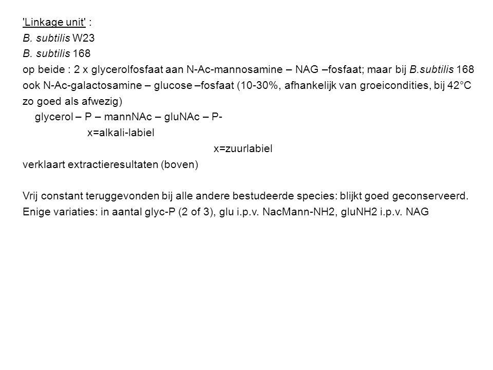 Linkage unit : B. subtilis W23. B. subtilis 168. op beide : 2 x glycerolfosfaat aan N-Ac-mannosamine – NAG –fosfaat; maar bij B.subtilis 168.