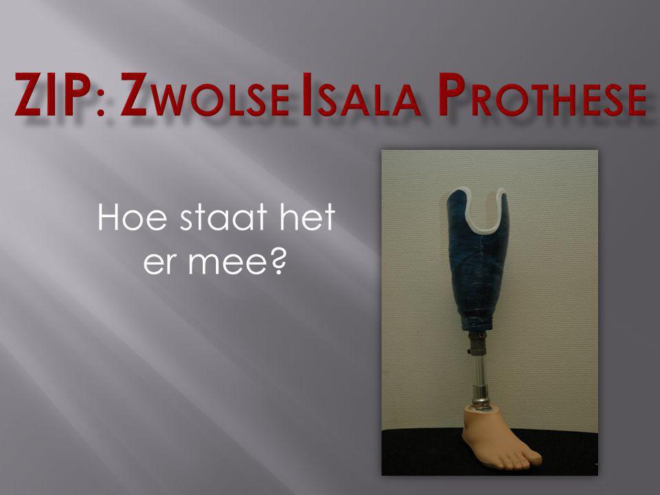 ZIP: Zwolse Isala Prothese
