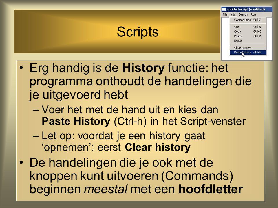 Scripts Erg handig is de History functie: het programma onthoudt de handelingen die je uitgevoerd hebt.